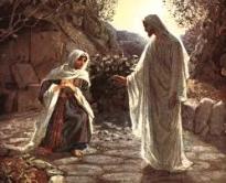 In the Garden of Resurrection — An artistic journey — Episode 4