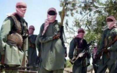 Boko Haram terrorists in Nigeria.