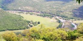 The beautful MMC KZv enue at Mooi River.