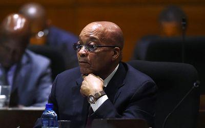 pensive Zuma