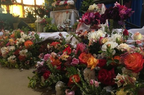 WATCH: Flower festival inspires hope in midst of severe drought