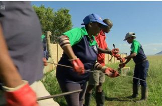 WATCH: BBC clip on SA town 'fixing itself' inspires Kingdom nation builders