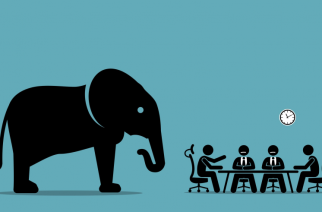 The elephant in the room: suffering — André Baard