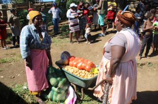 Wheelbarrows of love and good food reach vulnerable Howick families