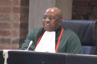 Victory in Constitutional Court is 'great reset for SA' — Michael Louis